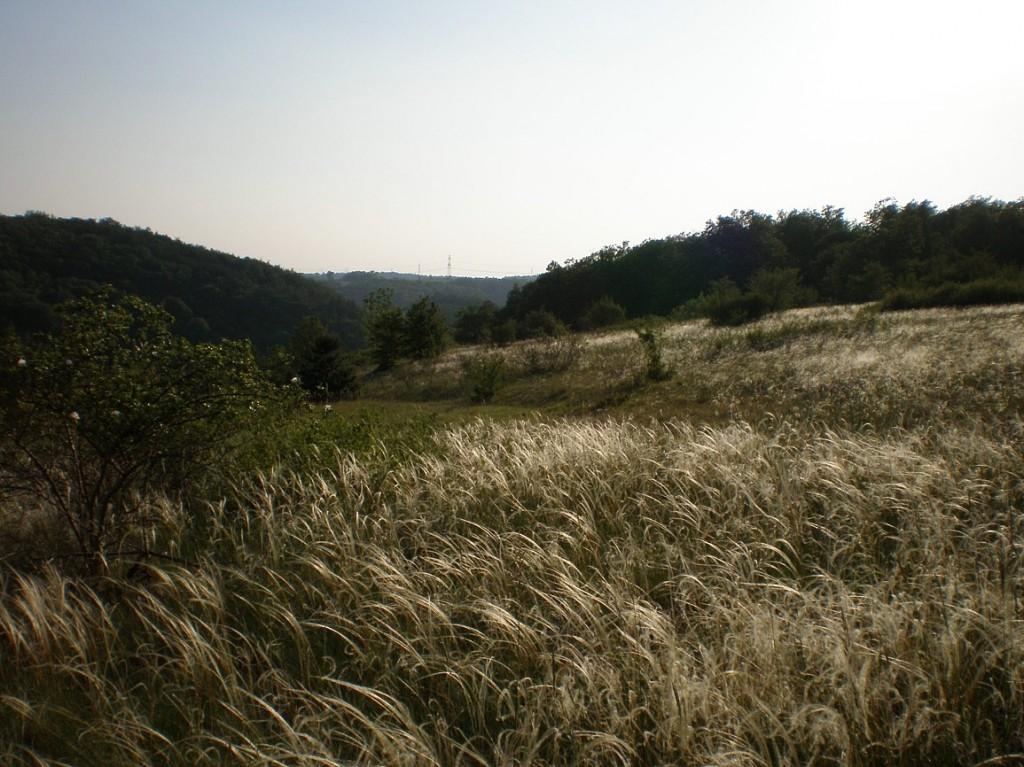 nad Radotínským údolím