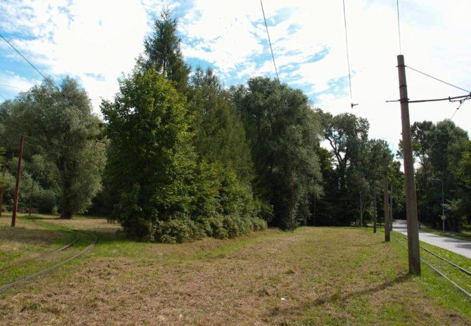 Obratiště Marymonska v Elblągu se nachází přímo v přírodě a můžete z něj vstoupit rovnou na turistické stezky Krajinným parkem Wysoczyzny Elbląskiej