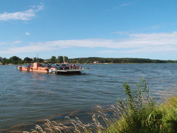 Nedaleko před ústím do Baltského moře překonává řeku Wisłu prám, jenž spojuje vesnice Świbno a Mikoszewo