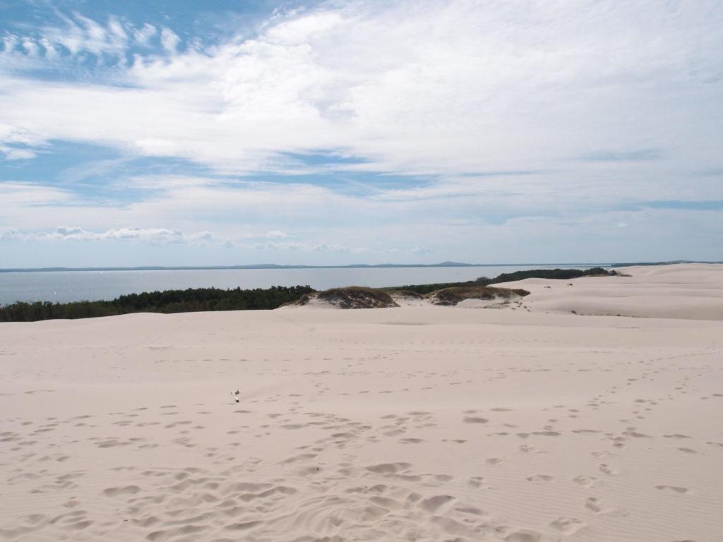 Z Łeby stojí za to si udělat okruh na duny, zde duna Łącka a za ní Łebské jezero.